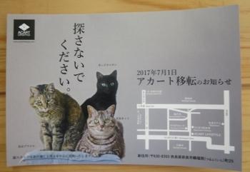 にゃら62 (350x241).jpg