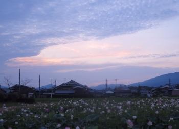 あさ7 (350x253).jpg
